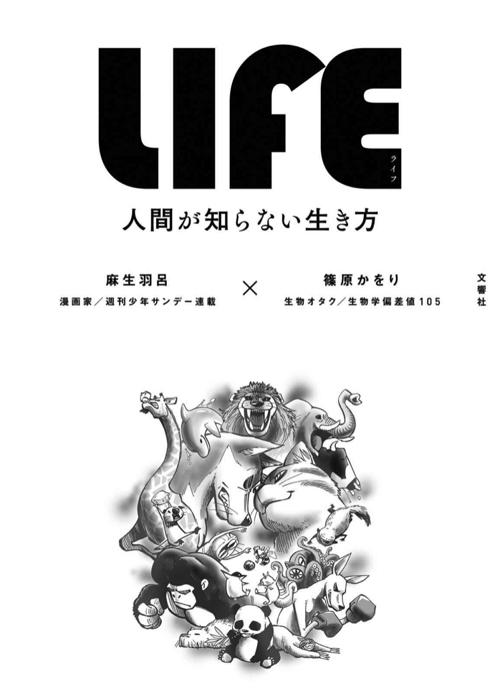 LIFE 表紙